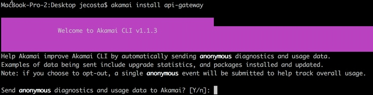 install API Gateway package